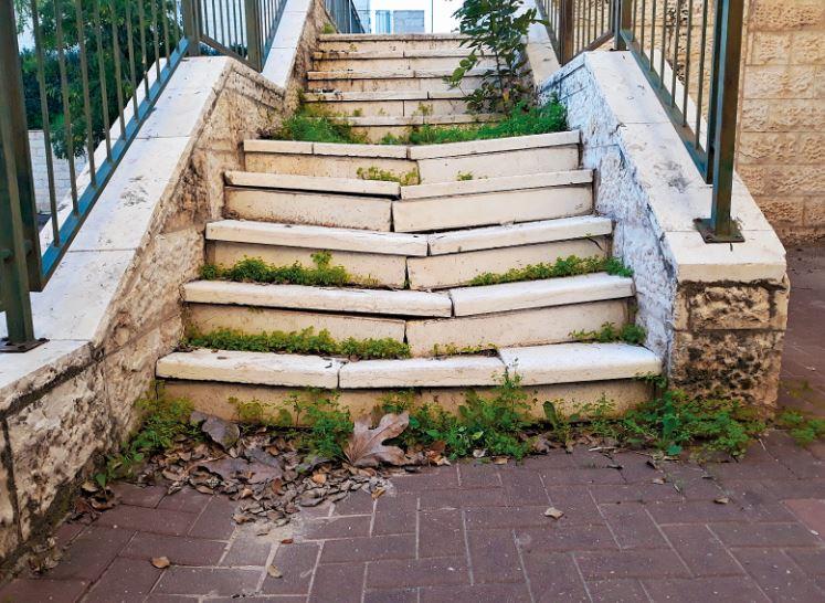 """""""לאנשים מהיישוב אין כלים לבצע משימות של עירייה"""". שטח פתוח פרטי ברחוב חטיבת גולני"""