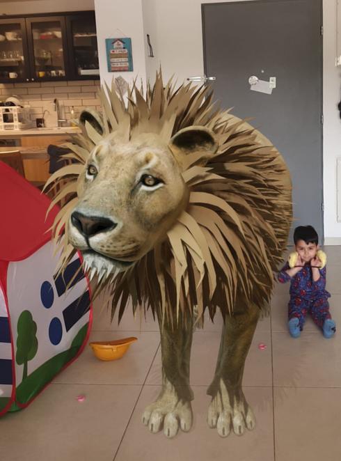 האריה שקפץ לביקור