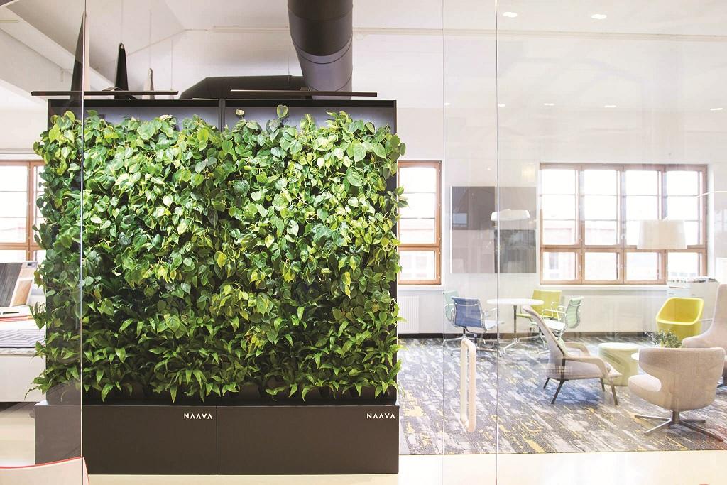 """קיר ירוק חכם שמשמש, מעבר לדקורציה ירוקה בחלל, לניקוי ולסינון האוויר באמצעות טכנולוגיה מתקדמת שפותחה בנאס""""א. כרמל ביזנס"""