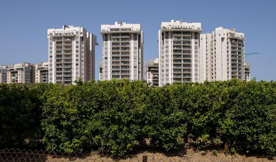 המגדלים בהם יהיה פרויקט דירה להשכיר בכפר יונה