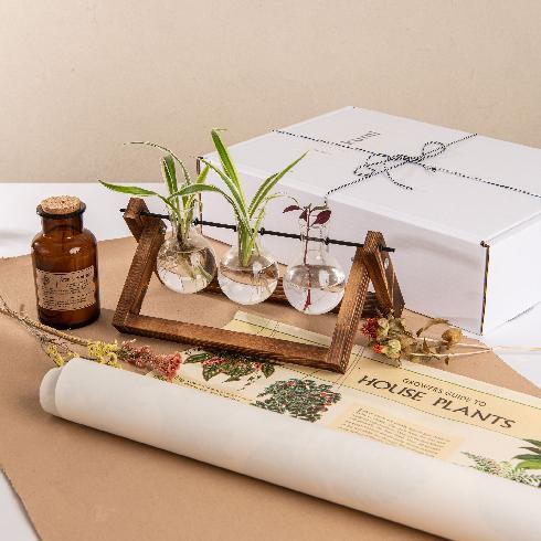 קופסא לחובבי צמחים - אתר הלייפסטייל www.ku-mi.com