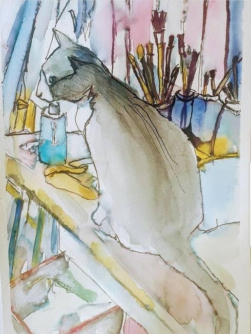 חתול, מתוך התערוכה
