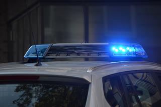 ניידת משטרה | צילום המחשה: pixabay