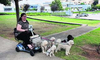 אושר וחמשת כלביה   צילום: אלי גל